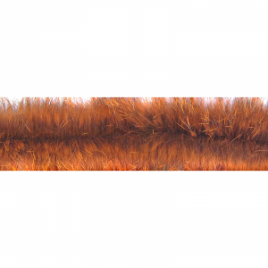 MFC Bunny Brush Craw Orange