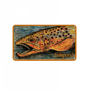 """Fishpond Fly Fishing Brown Trout Fish Sticker- 5.5"""""""