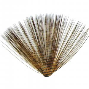 MFC Micro-Barred Fibbetts Brown/Black