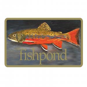 "Fishpond Brookie Sticker 5"" Decorative Bumper Fly Fishing"