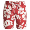 "Quiksilver Mens Nassau 18"" Volley Boardshorts"