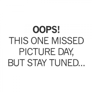 Yaktrax RUN Safety(S)