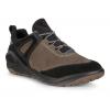 Mens Ecco BIOM 2GO Gore-Tex Walking Shoe(9.5)
