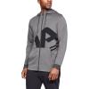 Mens Under Armour Fleece Full Zip Half-Zips and Hoodies Technical Tops