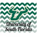 Fanatics South Florida Bulls 2-Pack Chevron Car Magnets