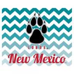 Fanatics New Mexico Lobos 2-Pack Chevron Car Magnets