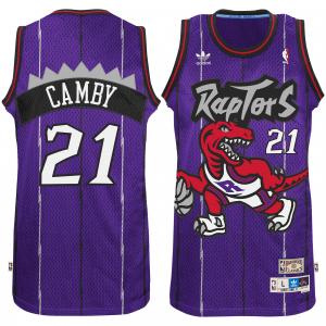 Marcus Camby Toronto Raptors adidas Hardwood Classic Swingman Jersey - Purple
