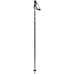 Atomic AMT 2 Ski Poles