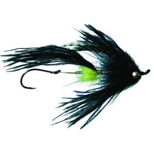 Signature Intruder - Mult Colors 3642
