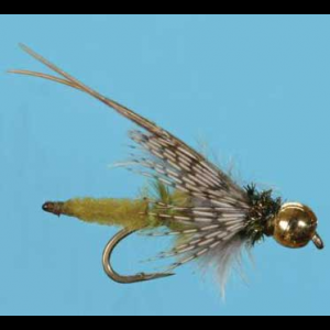 BH Extended Body Caddis Pupa - Mult Colors 3657