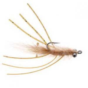 Veverkas Mantis Shrimp 3721