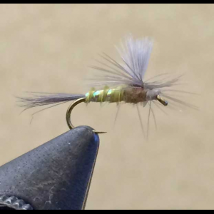 UV2 Parachute BWO 3808