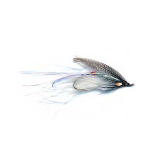 Alewife Spey 3784