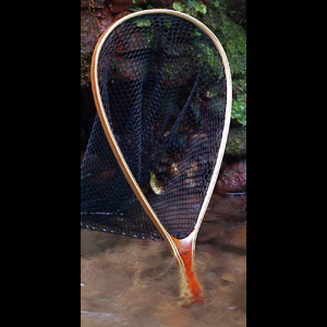 Brodin Pro Trout Net - Cocobolo Handle 1594