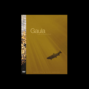Gaula River of Silver and Gold 2784