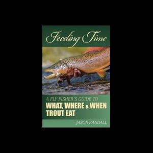 Feeding Time 3106