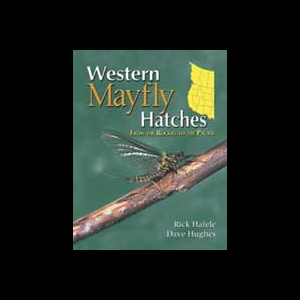 Western Mayfly Hatches 847