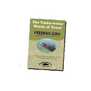The Underwater World Of Trout: Feeding Lies 991