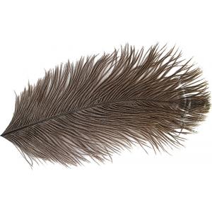Ostrich Mini Plume 1533