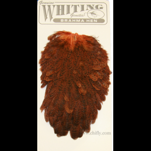 Whiting Brahma Hen Saddles 1751