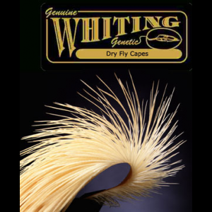 Whiting Dry Fly Capes 699
