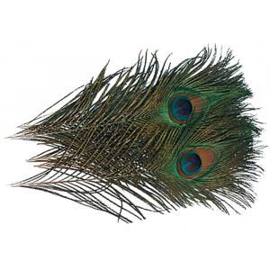 Peacock Eyes 718