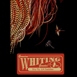 Whiting 1/4 Saddles Grade Silver and Bronze 701