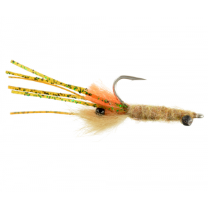 Orange Bearded Mantis Shrimp Tan 4395