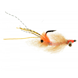 Dazzle Eye or Bead Chain Spawning Shrimp 4400