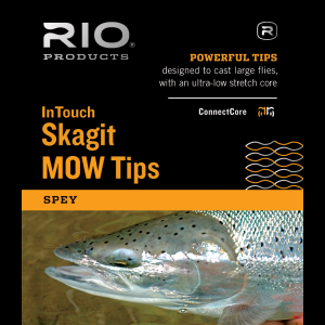 Rio InTouch Skagit MOW Tips & Kits 4420