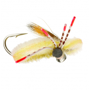 Turneffe Crab - Mult Colors 4422
