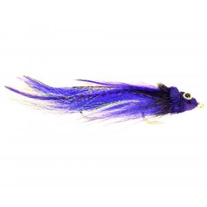 Trick or Treat - Purple 4498