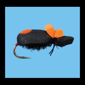 Foam Beetle 4312