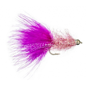 Coffees Sparkle Minnow Hot Pink 4807