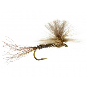 Parachute Henny (Hendrickson) 4895