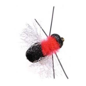 Umpqua Fathead Beetle 5341