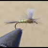 UV2 Parachute BWO