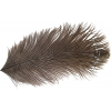 Ostrich Mini Plume